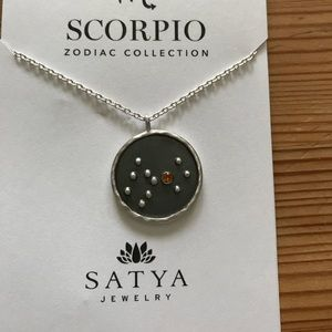 Scorpio zodiac SS necklace oct 23 -Nov 21